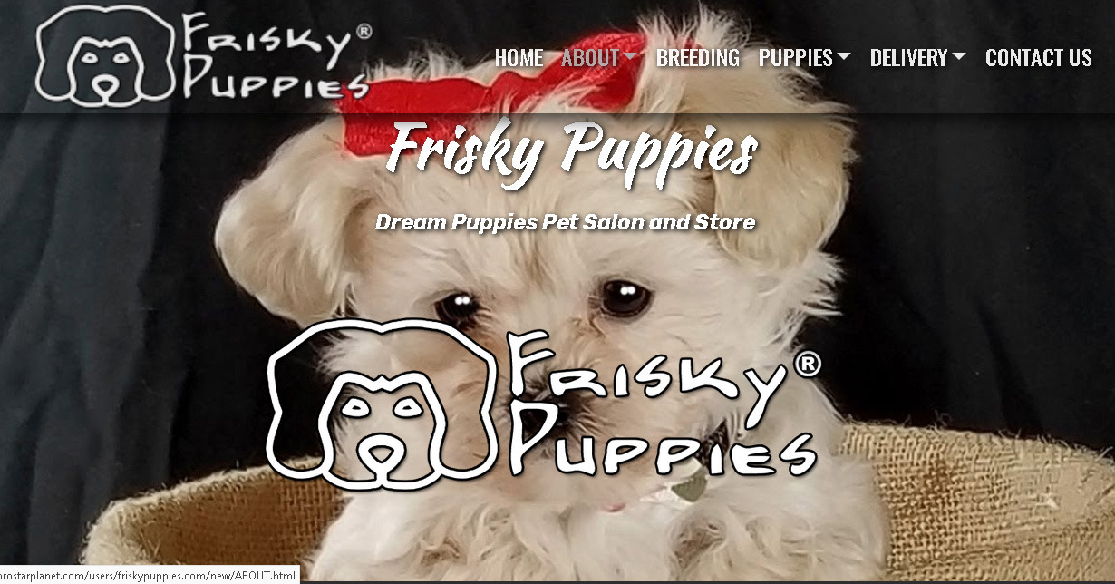 ABOUT Frisky Puppies